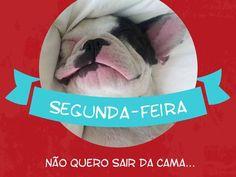Minha cama está tão quentinha, não quero sair!!!  #segunda #soninho #sono #cao #animais