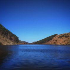 By the shores of Llyn Geirionydd #snowdonia #betwsycoed #wales #northwales #conwy #llanrwst #gwydyrforest #gwydirforest #forest #trees #lake #blueskies #bluewater #llyngeirionydd #forestwalk #lakephotography #sunnyday  #snowdonianationalpark #snowdonia