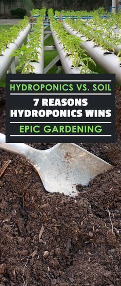 """Learn the 7 reasons that the """"hydroponics vs soil"""" battle is won handily by hydroponics. After reading this, you won't want to use soil ever again! #hydroponicsflowers"""