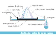 ¿Cómo construir un destilador solar casero para purificar agua? - Twenergy
