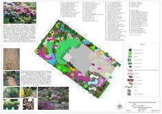 koncepcja-ogrodu-leśnego