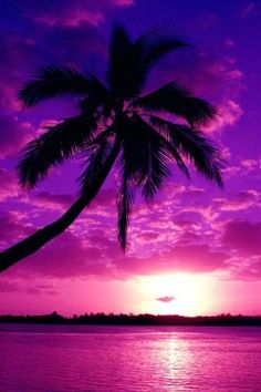 Purple Sunset, all my favorite colors #SephoraColorWash