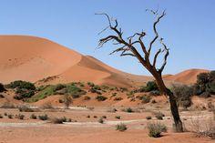 Sossusvlei - Namib-Naukluft National Park  Namibia