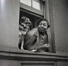 Gordon Parks, Vintage Photographs, Vintage Photos, Park Photography, Photography Gallery, Urban Photography, Color Photography, Vintage Dog, Burlesque