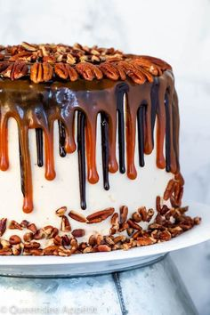 This Turtle Chocolate Layer Cake starts with rich decadent and moist chocolate cake layers that are filled with a caramel pecan sauce and covered in a smooth caramel frosting then finished off with a caramel and ganache drip and chopped pecans! Chocolate And Vanilla Cake, Chocolate Cupcakes, Chocolate Frosting, Drip Cakes, Poke Cakes, Layer Cakes, Buttercream Frosting, Caramel Frosting, Layer Cake Recipes