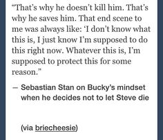"Now that I'm done crying over this, I can giggle because I'm imaging Bucky just looking down at Steve, eyes narrowed, and telling himself, ""This thing is suicidal and stupid, so I must protect this suicidal and stupid thing."""