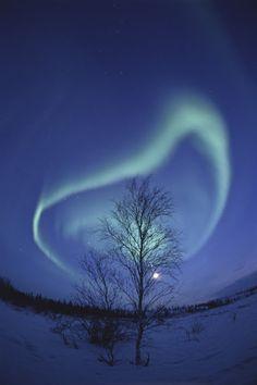 Incredible Aurora Photo by Nori Sakamoto !