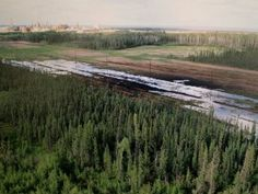 Oilsands pipeline projects look doomed after Nexen oil spill leaves 'two big football fields of black goo'