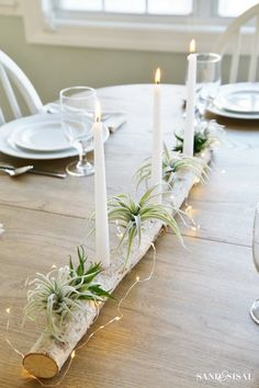 Whimsical Centerpiece with Succulents and Fairy Lights