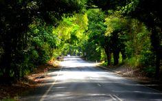 Warner Street in Port Douglas, Australia