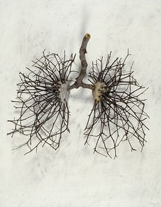 Ian Crawley- God's Prototype: The Nature of Man: Lungs (2002) - Sticks, stones, graphite and gesso on wood