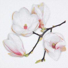 Posh Party Supplies - White Magnolia Designer Lunch Napkins - 20 Paper Napkins, $4.98 (http://www.poshpartysupplies.com/posh-products/posh-designer-napkins/floral-themed-paper-napkins/white-magnolia-designer-lunch-napkins-20-paper-napkins/)