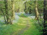 Belhus Woods