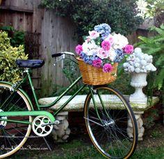 Blooming Bicycles...