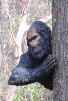 Must...Have...BIGFOOT STATUE. Life sized of course ...
