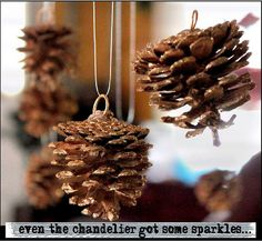 hanging pinecones from the chandy!
