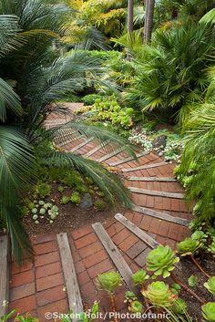 Brick path steps down through Worth tropical foliage garden on California hillside