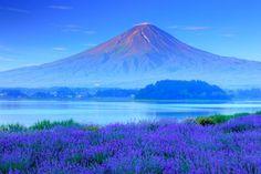 """「ZEKKEI」という言葉に日本の美しい風景と文化という意味合いを込めて、数々のスポットを紹介してきた私達ZEKKEI Japanですが、この度""""Facebook100万いいね""""を達成いたしました! 国外へ日本の素晴らしさを伝えてきた私達にとって、欠かせなかったのがサ..."""