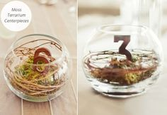 Arrange moss, twigs and wooden numbers in a glass globe vase to create rustic centerpieces that work as table numbers, too!