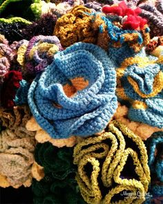 Coral Reefs Lead to Crochet Inspiration