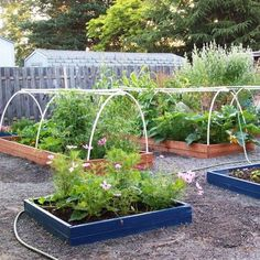 Home Garden Greenhouse Design, Pictures, Remodel, Decor and Ideas - page 2