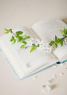 Shhh~ I'm READING!