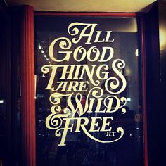All Good Things are Wild & Free· Matthew Tapia