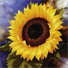 Tulip Fair Posters by Igor Levashov Giant Sunflower, Sunflower Art, Sunflower Pattern, Sunflowers And Daisies, Arte Floral, Mellow Yellow, Texture Art, Painting Inspiration, Illustration Art
