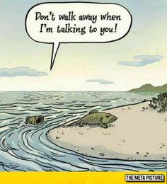 How Evolution Started