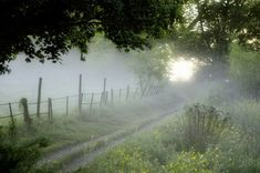 When our path is cloudy or seems unclear.You have made known to me the paths of life you will fill me with joy in your presence -Acts Country Life, Country Roads, Country Living, Foggy Morning, Morning Sunrise, Early Morning, Back Road, Farm Life, Mother Nature