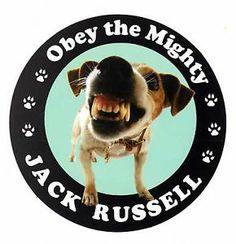 Jack Russell Terrier Window Sticker