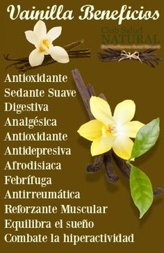 Calm down with the Vanilla Benefits of the Aztec Black Flower – Club Salud N … – Health Tomato Nutrition, Health And Nutrition, Health And Wellness, Health Tips, Health Fitness, Health Benefits, Calendula Benefits, Matcha Benefits, Brain Healthy Foods