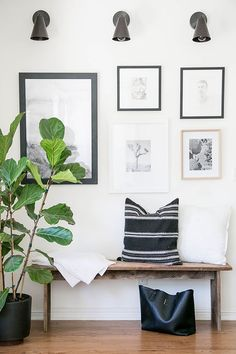 entryway wooden bench in hallway, gallery wall, black sconces, fiddle leaf fig house plant