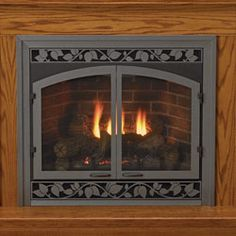 Direct Vent Stoves and Inserts Fireplace Guard, Fireplace Fronts, Direct Vent Fireplace, Fireplace Screens, Stove Fireplace, Fireplace Inserts, Fireplace Ideas, Fireplace Stores, Natural Gas Fireplace