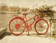 Red Bicycle by Garvin Hunter Black And White Prints, Bicycle, Wall Art, City, Red, Bike, Bicycle Kick, Bicycles, Cities