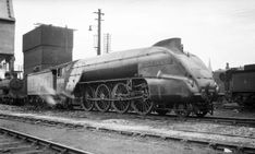 2001 Cock o' the North - Steam Locomotive Company Steam Railway, British Rail, Train Engines, Steam Engine, Steam Locomotive, Edinburgh, The Incredibles, Construction, Model Kits