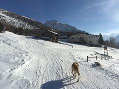 Wintersonne in Furggstalden
