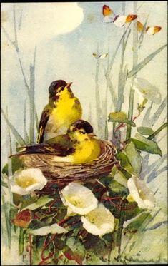 Милые сердцу штучки: Цветущий сад Катарины Кляйн (Catharina Klein)