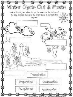 free science worksheet water cycle  heres some activities from a  water cycle freebie pack more