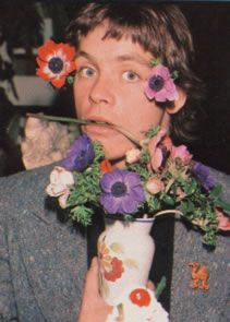 I should be writing but I want everyone everywhere to know that this picture of Mark Hamill exists. Mark Hamill Luke Skywalker, Star Wars Luke Skywalker, Star Wars Cast, Star Wars Film, Fluffy Hair, Best Actor, American Actors, Celebrity Photos, Beautiful People