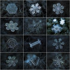 macro photographs of snowflakes, by Alexey Kljatov