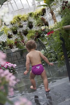 ADORABLE swim diaper from #applecheeks