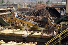 Weyerhaeuser Lumber Mill