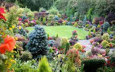Four Seasons Garden / English garden for all seasons. Winner Daily Mail National Garden Competition Winner Walsall in Bloom . Dream Garden, Garden Art, Garden Tools, Garden Design, Garden Ideas, Patio Ideas, Outdoor Ideas, Garden Plants, Amazing Gardens