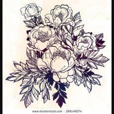 3008-vector-flowers-vintage-ornamental-frame-design-vector-botanical-illustration-isolated-on-aged-paper-268146074.jpg (230×230)