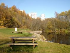 Nydalsdammen badeplass Oslo, Fjord, Outdoor Furniture, Outdoor Decor, Bench, Park, Home Decor, Garden Furniture Outlet, Decoration Home