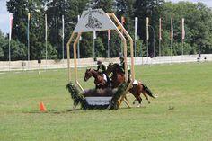 Présentation de la race F.M. Horses, Park, Animals, Pageants, Horse, Animales, Animaux, Parks, Animal Memes