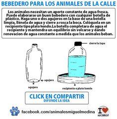 Bebedero para los animales de la calle | Construccion y Manualidades : Hazlo tu mismo