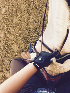 In the saddle.