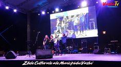 Adrian Naidin - Zilele Culturale ale Municipiului Vaslui My Music, Places To Visit, Concert, World, Concerts, The World